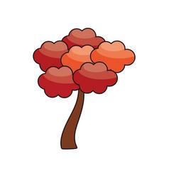 sakura tree japanese flora image vector image