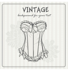 Vintage background with underwear vector image