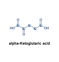 Alpha-ketoglutaric acid vector