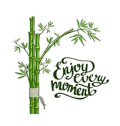 Bamboo green Enjoy every moment card vector image