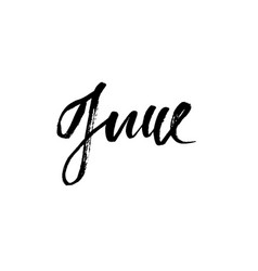 hand drawn typography lettering june month vector image vector image