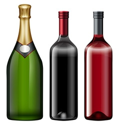 Three bottles of alcohol drink vector image vector image