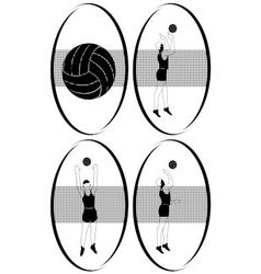 Volleyball 2 vector image