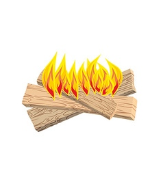 Camp fire isolated boards and flames on white vector