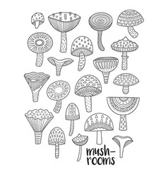 Mushrooms ink set coloring book page vector
