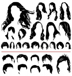 hair set vector image