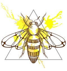 Zentangle stylized bee in triangle frame with vector