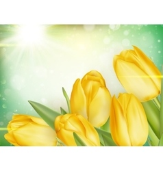 Tulips growing on green bokeh eps 10 vector