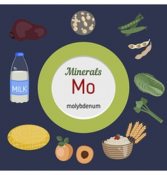 Minerals mo infographic vector