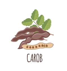 Carob icon in flat style on white background vector
