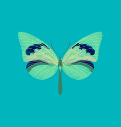 flat shading style icon butterfly vector image