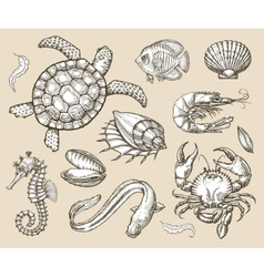 Hand drawn sketch set of seafood sea animals vector