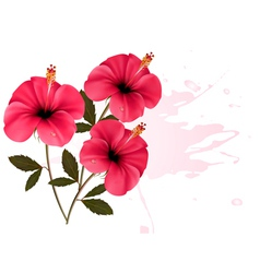 Three pink flowers background vector