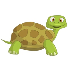Cartoon character turtle vector