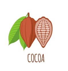 Cocoa icon in flat style on white background vector image