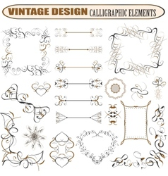 decorative ornate design elements vector image