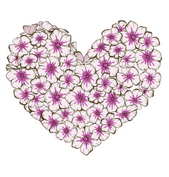 Heart of pink and violet phlox flowers isolated vector