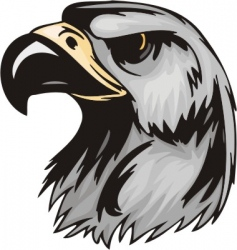 predatory birds vector image