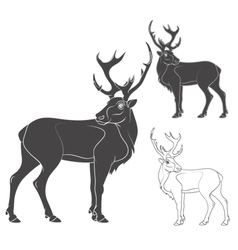 Black and white of a deer vector