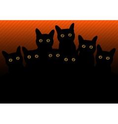Cats in black orange vector