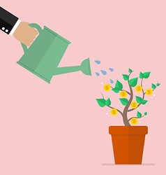 Hand watering money plant vector image vector image