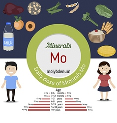 Minerals Mo infographic vector image