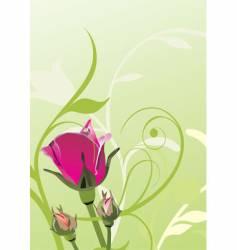 Scarlet roses vector