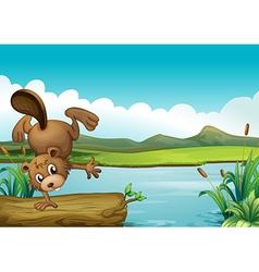 Cartoon River Beaver vector image vector image
