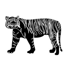 isolated tiger silhouette vector image vector image