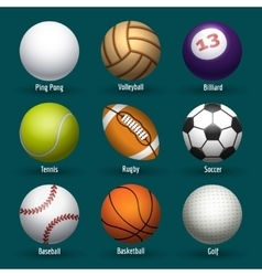 Sports balls icons vector image
