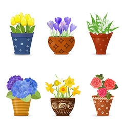 collection of cute flowers planted in art floral vector image