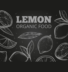 sketch leaves and lemons blackboard background vector image