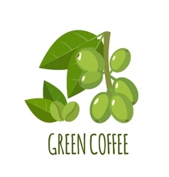 Green coffee icon in flat style vector