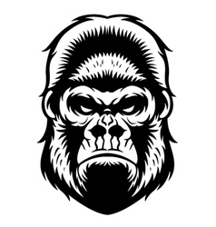 Gorilla head bw vector