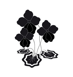 Bush silhouette of violets vector