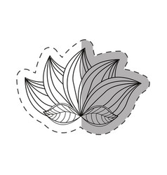 lotus flower decoration monochrome vector image