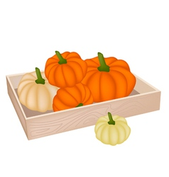 A Pile of Pumpkins in Wooden Box vector image