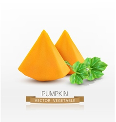 Pumpkin slices isolated on white background vector
