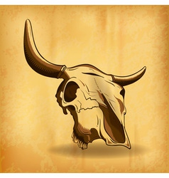 bull skull shadow background vector image