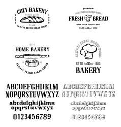 Alphabet calligraphic serif font unique vector