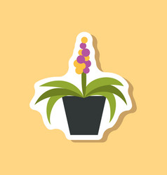 Paper sticker on stylish background hyacinth vector