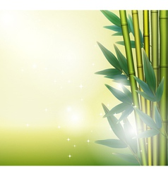 Glowing bamboo background vector image