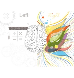 The left and the right brain functions vector