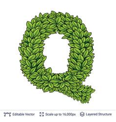 Letter q symbol of green leaves vector