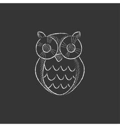 Owl Drawn in chalk icon vector image