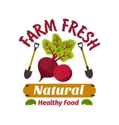 Beet Farm fresh vegan vegetable product vector image vector image