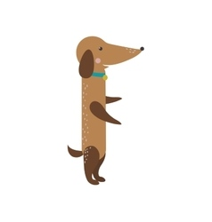 Flat dog pet sitting cute vector image vector image