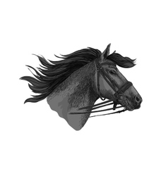 Horse trotter in bridle racing sketch vector