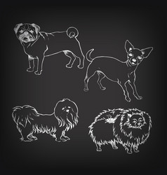 sketch of set dogs on blackboard vector image vector image