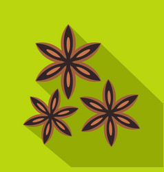 Star anise spice icon flat style vector